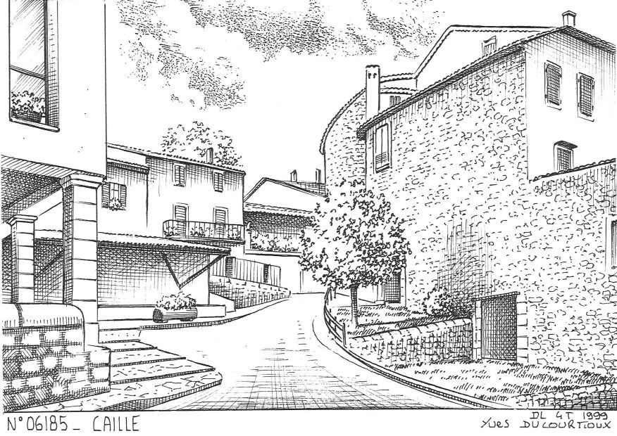 N° 06185 - CAILLE - vue
